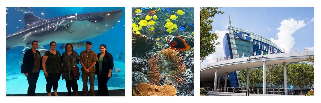 Conf Planners & tank, fish, aquarium exterior